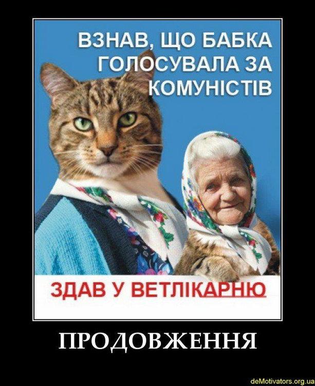 бабка и кот