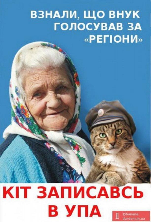 Бабуля и кот