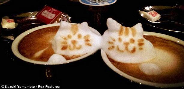 Казуки Ямамото фото кофейных произведений