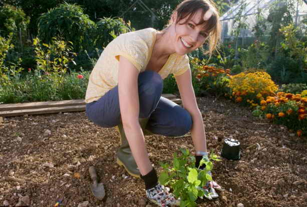 Садоводство лучший досуг