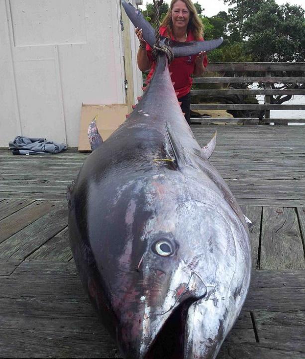 Самый большой тунец (Книга рекордов Гиннеса) и Донна Паско поймавшая его