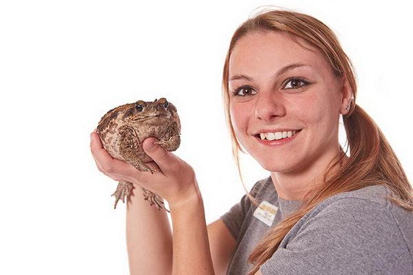 Самая большая жаба