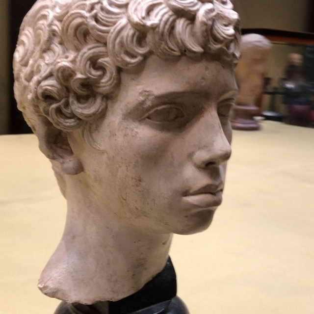 Копия мраморной головы мальчика древнеримской эпохи 2 век близнец Максима Галкина