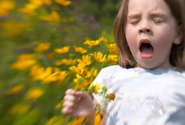сенная лихорадка аллергия простуда чихание