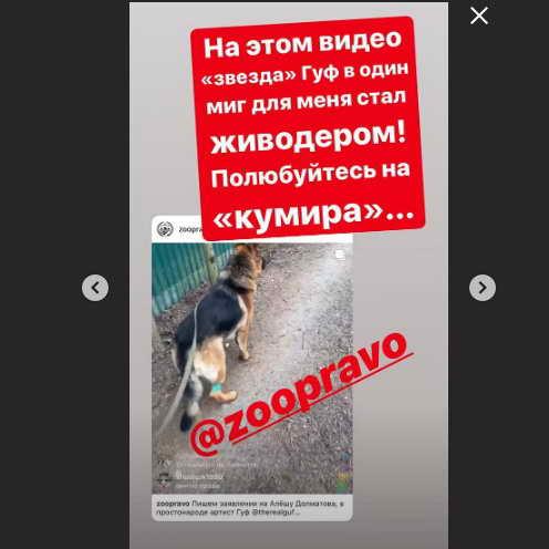 Реакция Ольги Орловой на рэпера Гуфа в ситауци с собаками