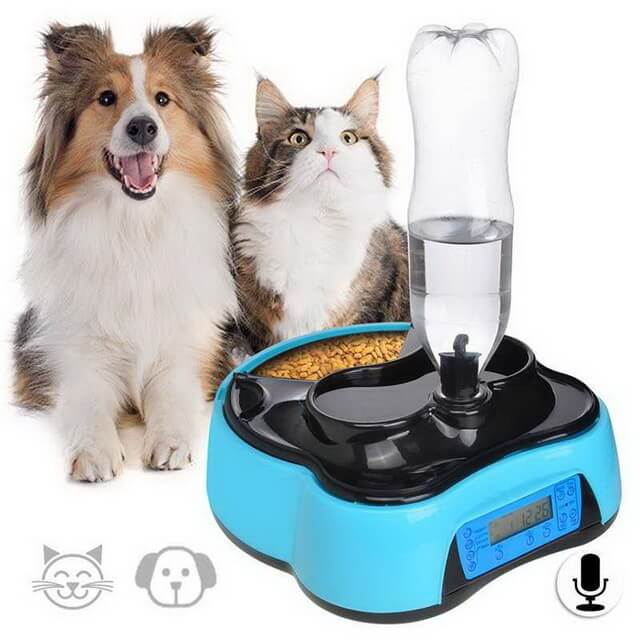 Забота в подарок: автоматическая кормушка для кошек и собак