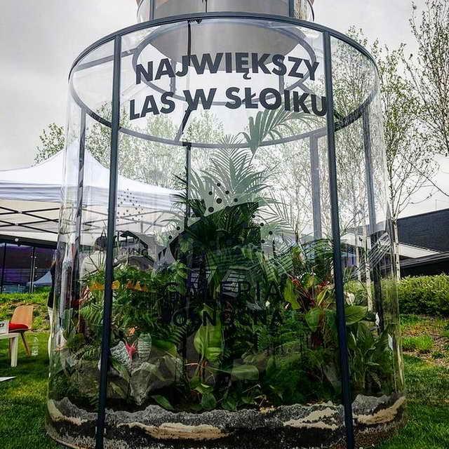 Самый большой растительный террариум