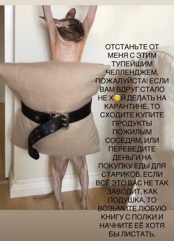 Подушка челлендж
