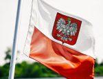 Почему молодежь выбирает Польшу?
