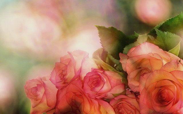 Заказ и доставка цветов и букетов любой сложности в Минске