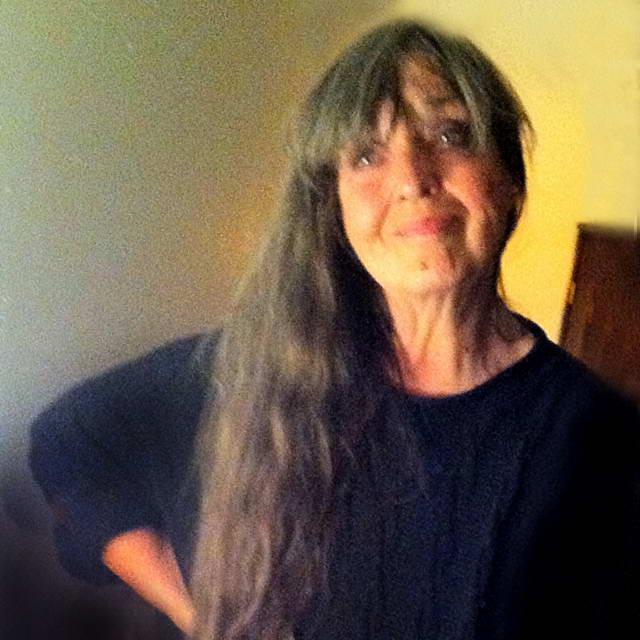 канадская художница Дайанн Хейст.
