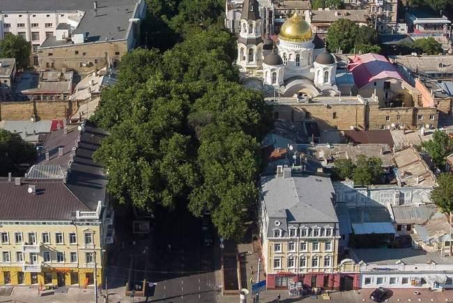 5 причин выбрать частный летний отдых в Одессе